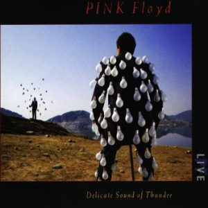 Pink Floyd Wish You Were Here Live